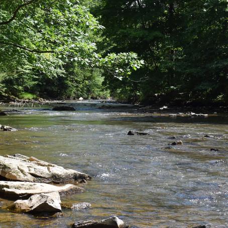 Chest Creek, Cambria County