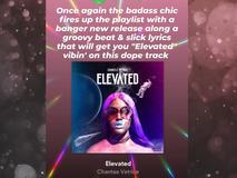 Chantae Vetrice - Elevated