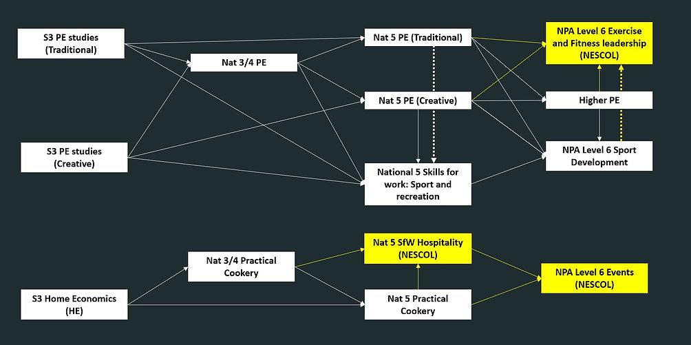 Health pathway.JPG