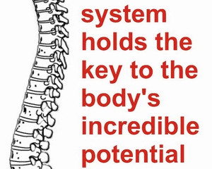 Chiropractic Care: A brief overview