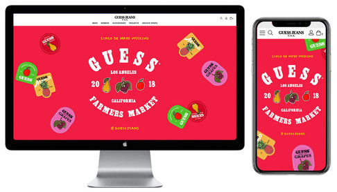 Website Teaser Pages