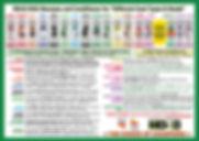 md10 flyer ebay.jpg