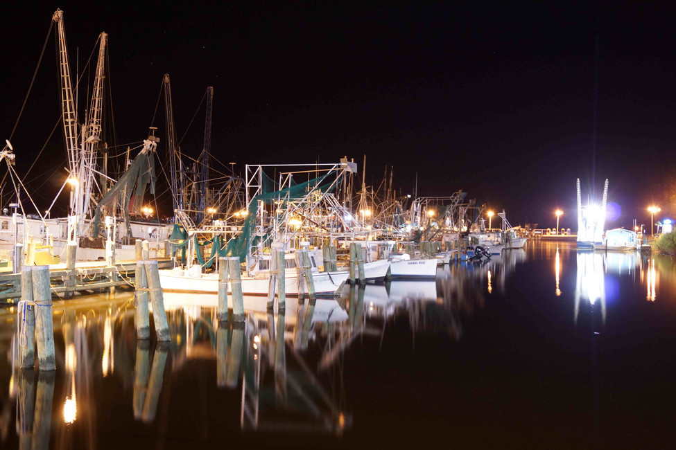Night Boats WEB.jpg