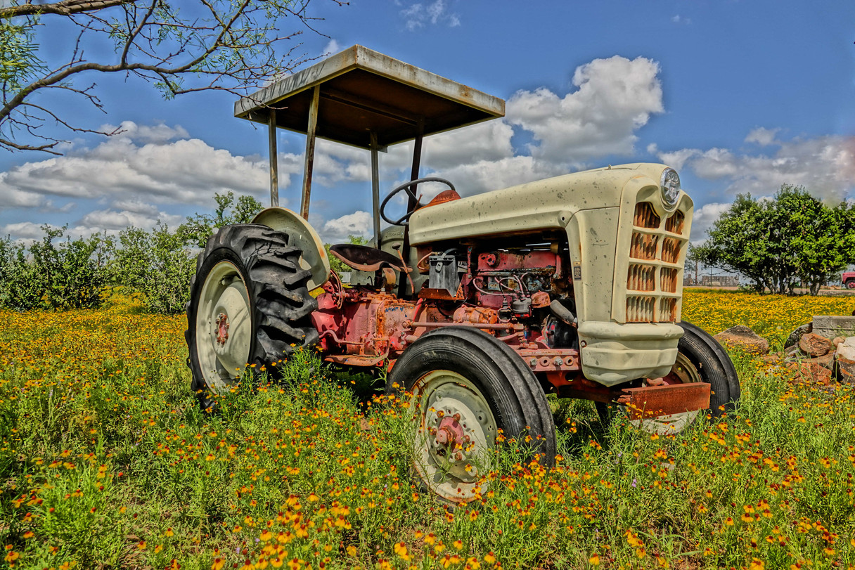 Texas Tractor in Wildflowers