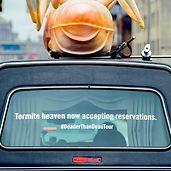 termite hearse
