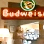 Budweiser sin