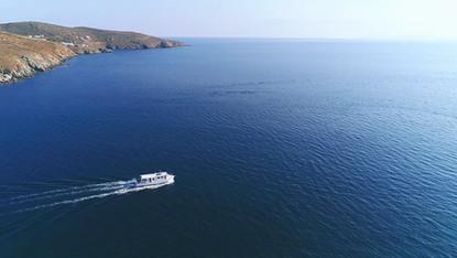 Daily Cruises