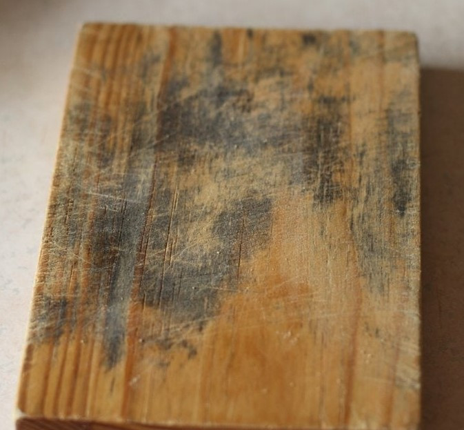 Blue Stain on wood
