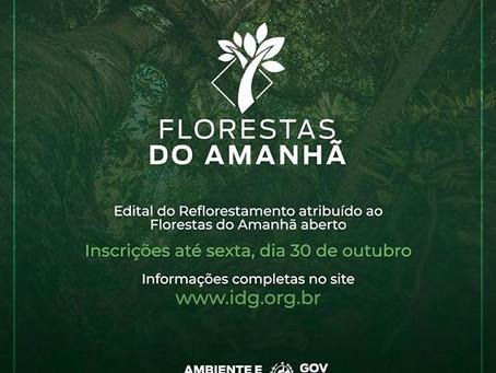 """Lançado Edital de Reflorestamento para o Projeto """"Florestas do Amanhã"""""""