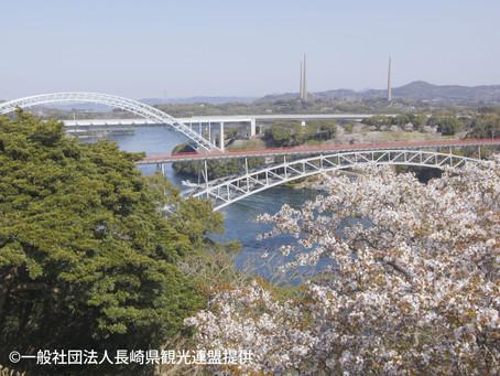 春の長崎 西海橋の渦潮と桜をおススメします