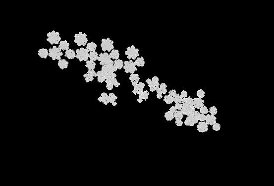 star shadows.png