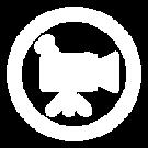 Virtual Icon.png
