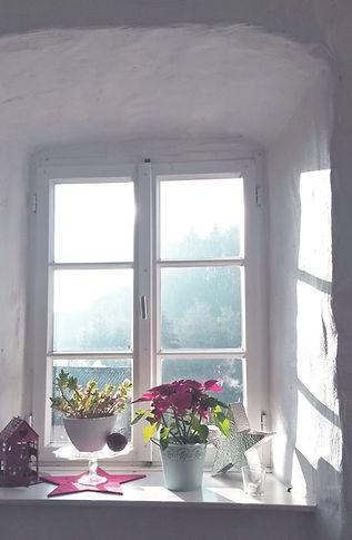 Fenster Speisezimmer