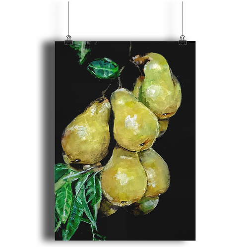 PAINTING OF PEARS ON A PEAR TREE Poster