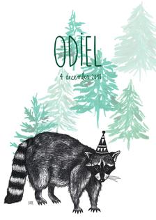 Geboortekaartje Odiel.