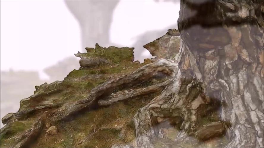Levantamiento 3D y seguimiento de árboles singulares