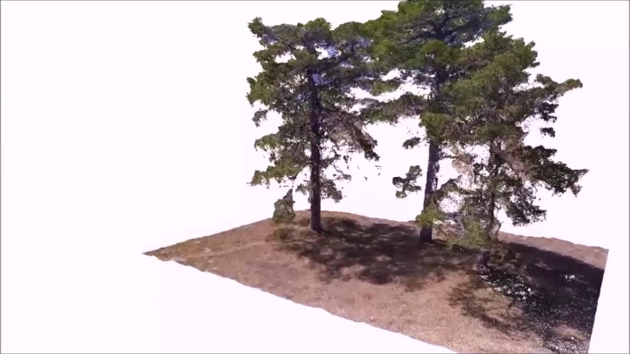 Nuevas tecnologías de inventario forestal