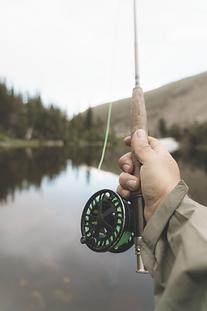 fishing reel .png