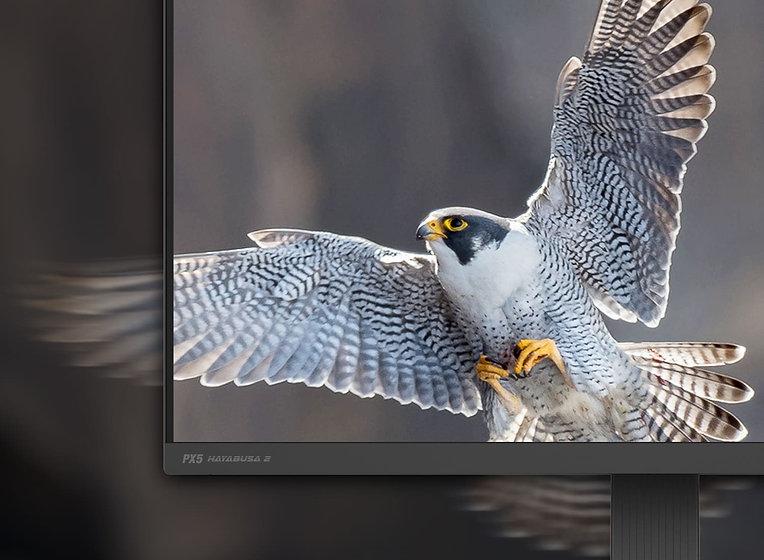 Pixio_gaming monitor_1ms GTG_hayabusa 2.