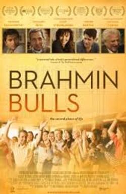 BrahminBulls