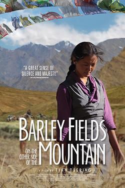 Barley_Fields