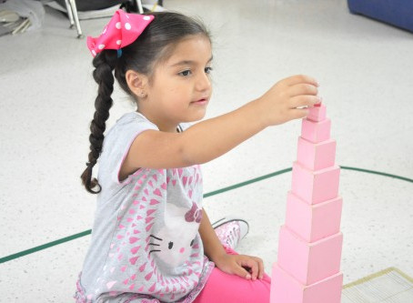 Montessori Material of the Month: Pink Tower