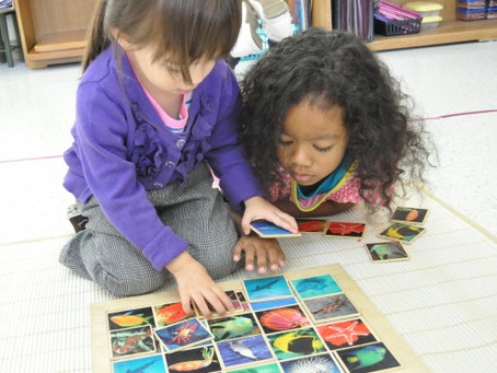 5 Unexpected Benefits of Mixed Age Montessori Classrooms
