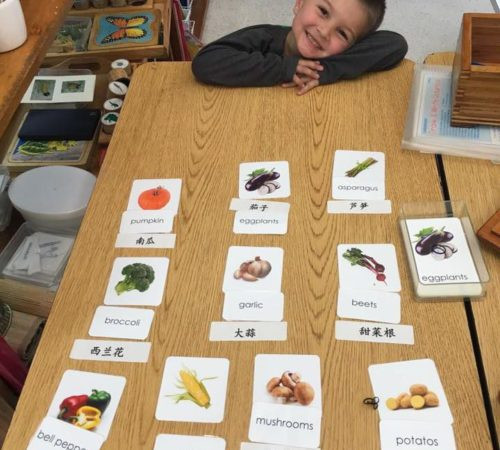 Primary Dual Language Program