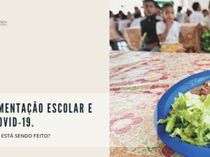 COVID-19 - segurança alimentar global, ações Brasil e alimentação escolar: o que está sendo feito?