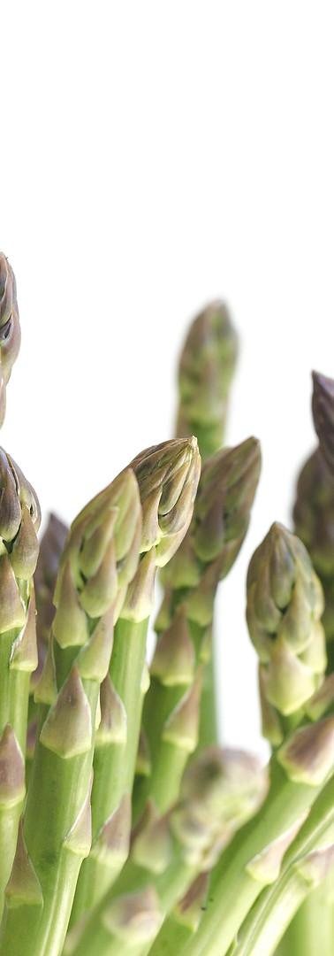 asparagus-on-white.jpg