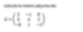matriz adjunta 3x3.png