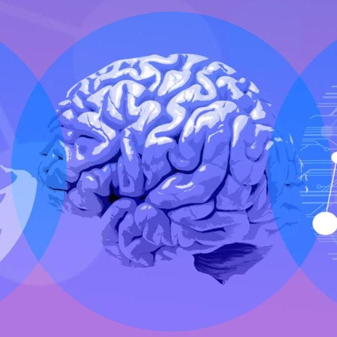 Beyond the Brain: A Multidisciplinary Conference on Neurodegenerative Diseases