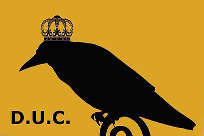 bird_edited.jpg