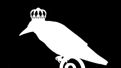 Colonizer Bird (1).jpg