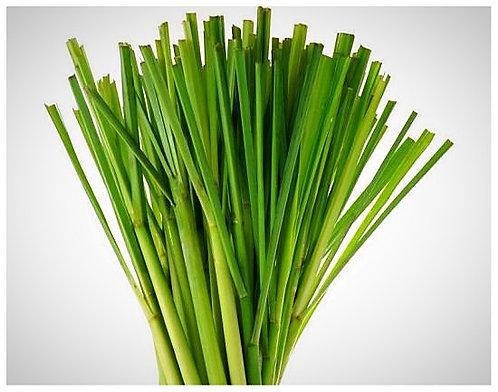 20 Lemongrass Lip Balm