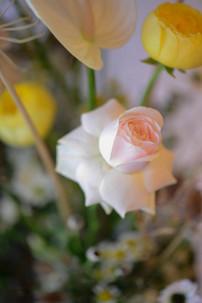 flowers (945).jpg