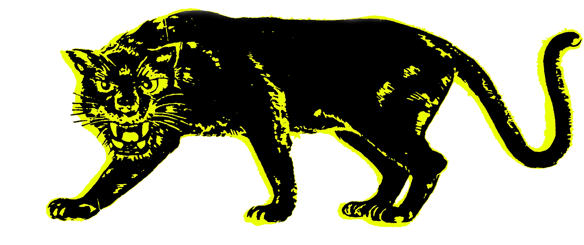 tiger print.png