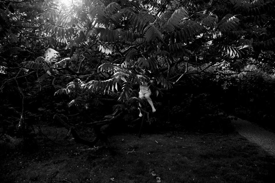Zohar leaves the tree a few hours before Tamar leaves my uterus Berlin 2015