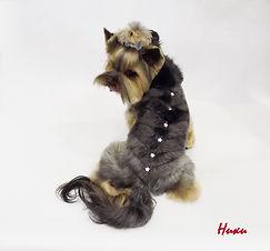 стрижка собак на преображенской