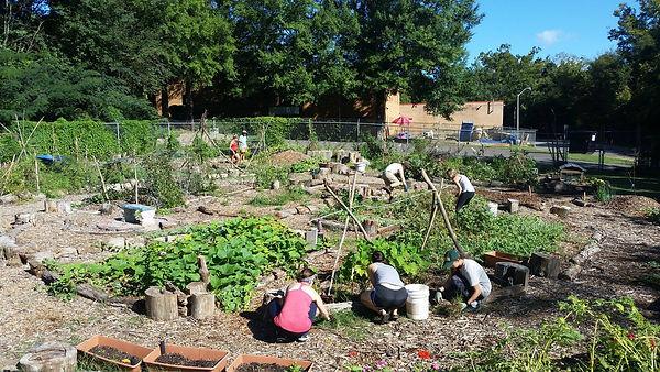 people working in garden.jpg