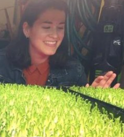 Happy Microgreens