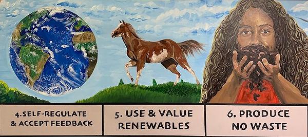 4 - 6 Permaculture Principles.jpg