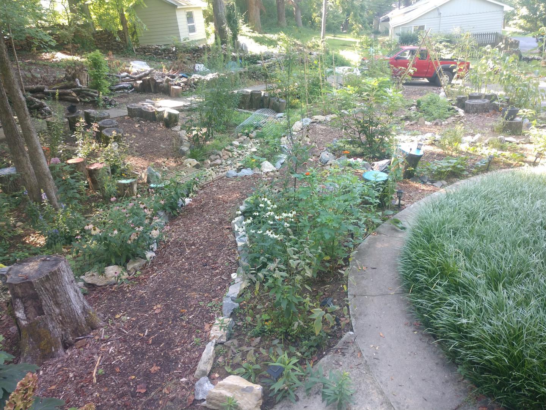 Owen's garden2.jpg