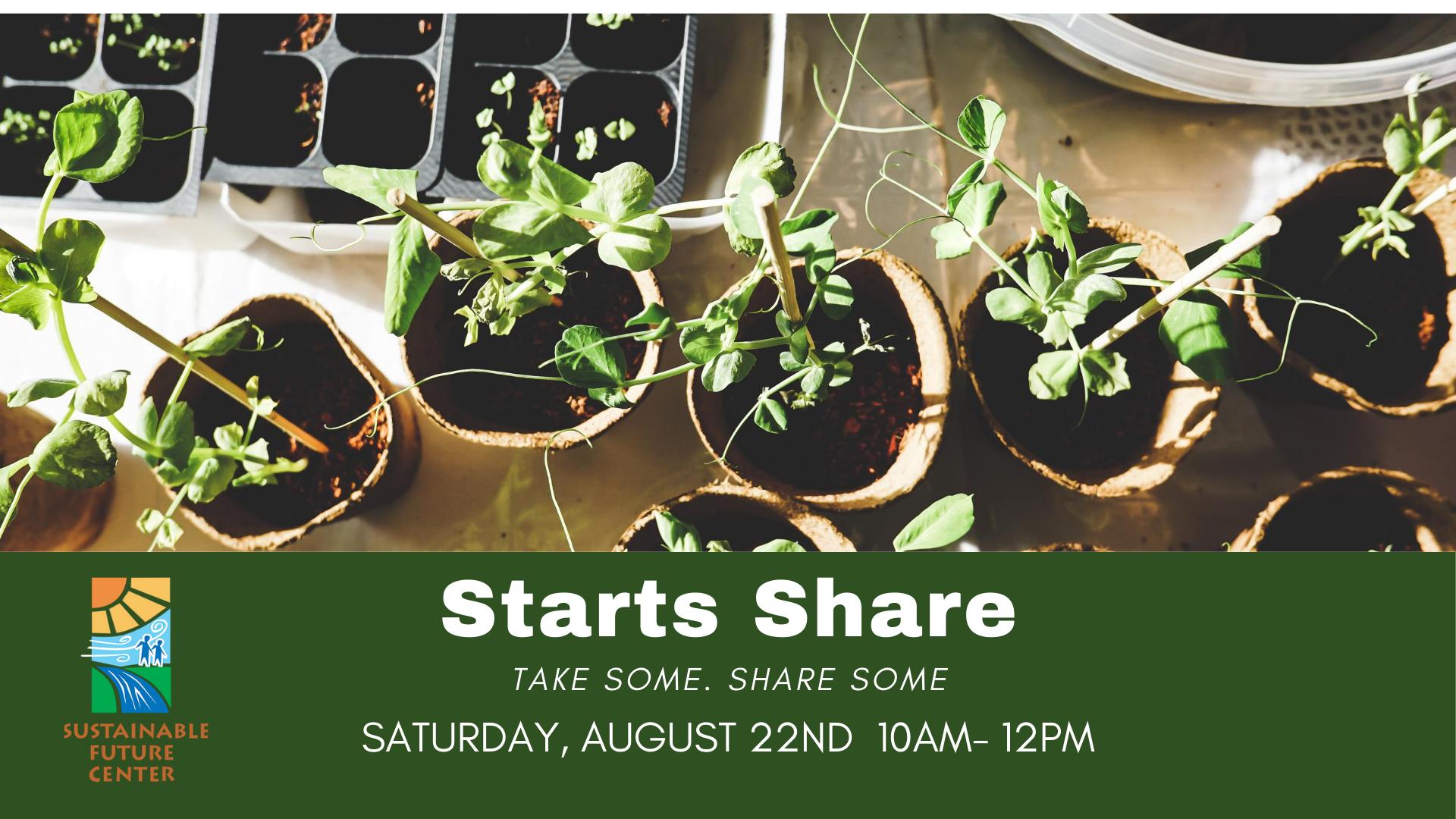Starts Share