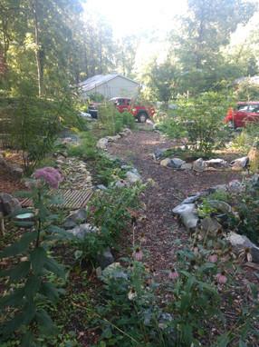 Owen's garden.jpg