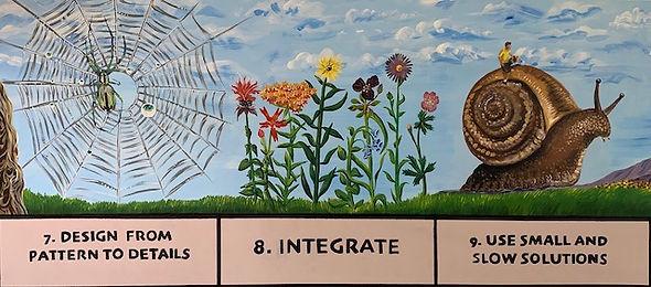 7 - 9 Permaculture Principles.jpg