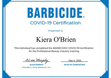 Barbecide Covid-19 Training