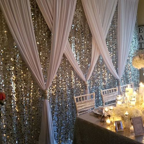 Silver Bling and White Backdrop