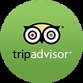 tripadvisor-logo.razorr