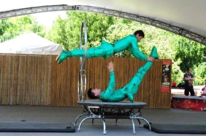 acrobat_14.jpg